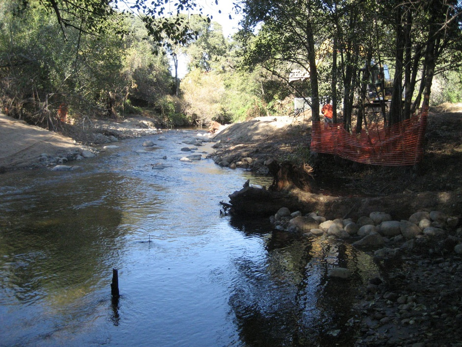 restoring creek by fixing nearby trees